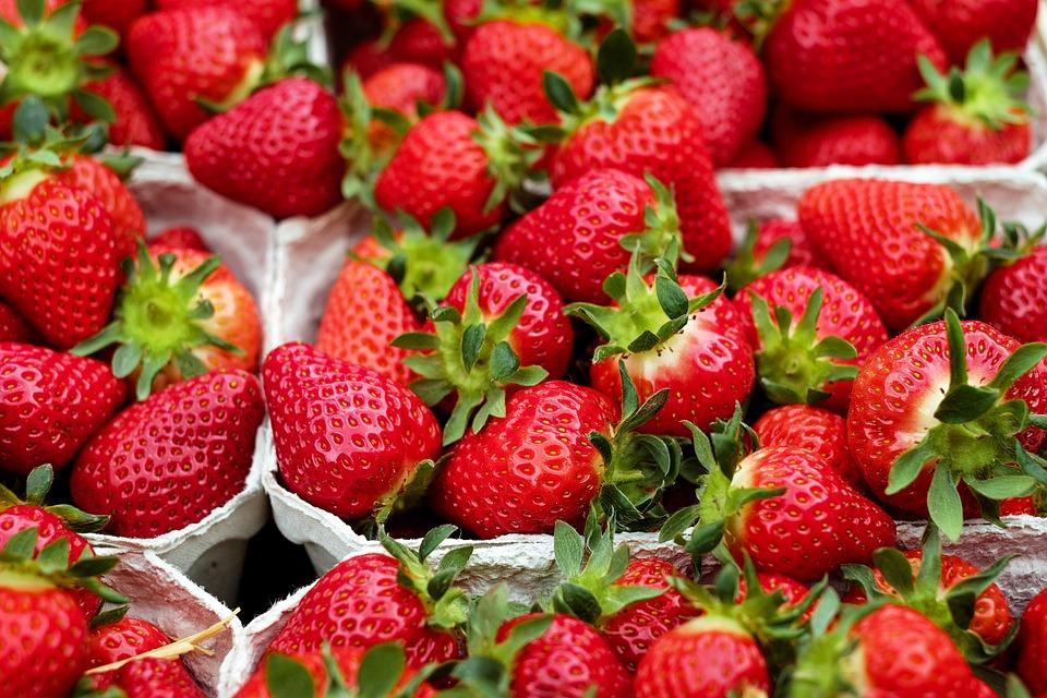 Jak wyhodować zdrowe truskawki?